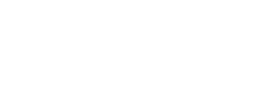 Logo-Conseq-bez@2x